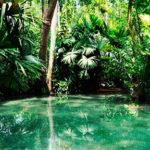 jardin-botanico-cartagena-3