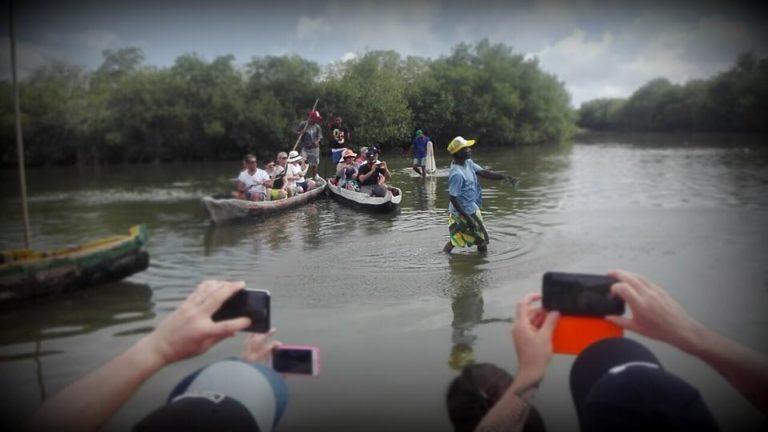 manglares show de pesca