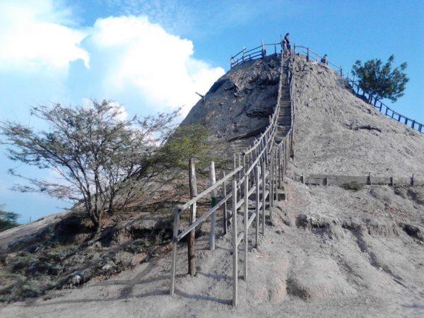 volcan vivarium4
